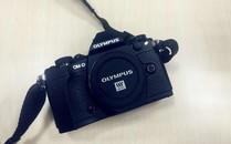 相机不错,没能买上白...